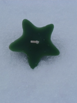 Green Star Floater